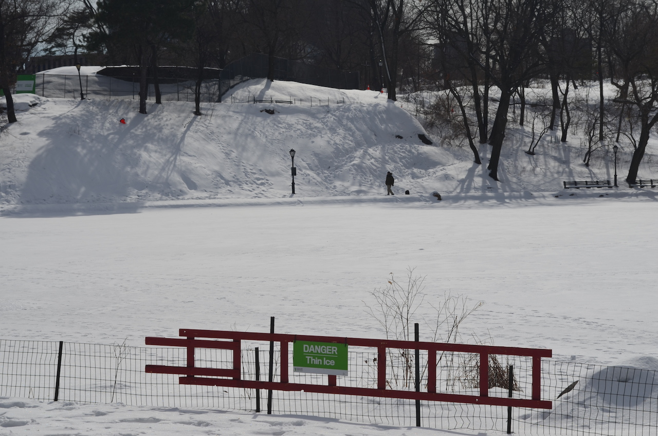 Snow Covered Meer in Central Park