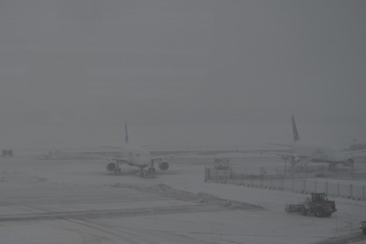 Snow Day at JFK