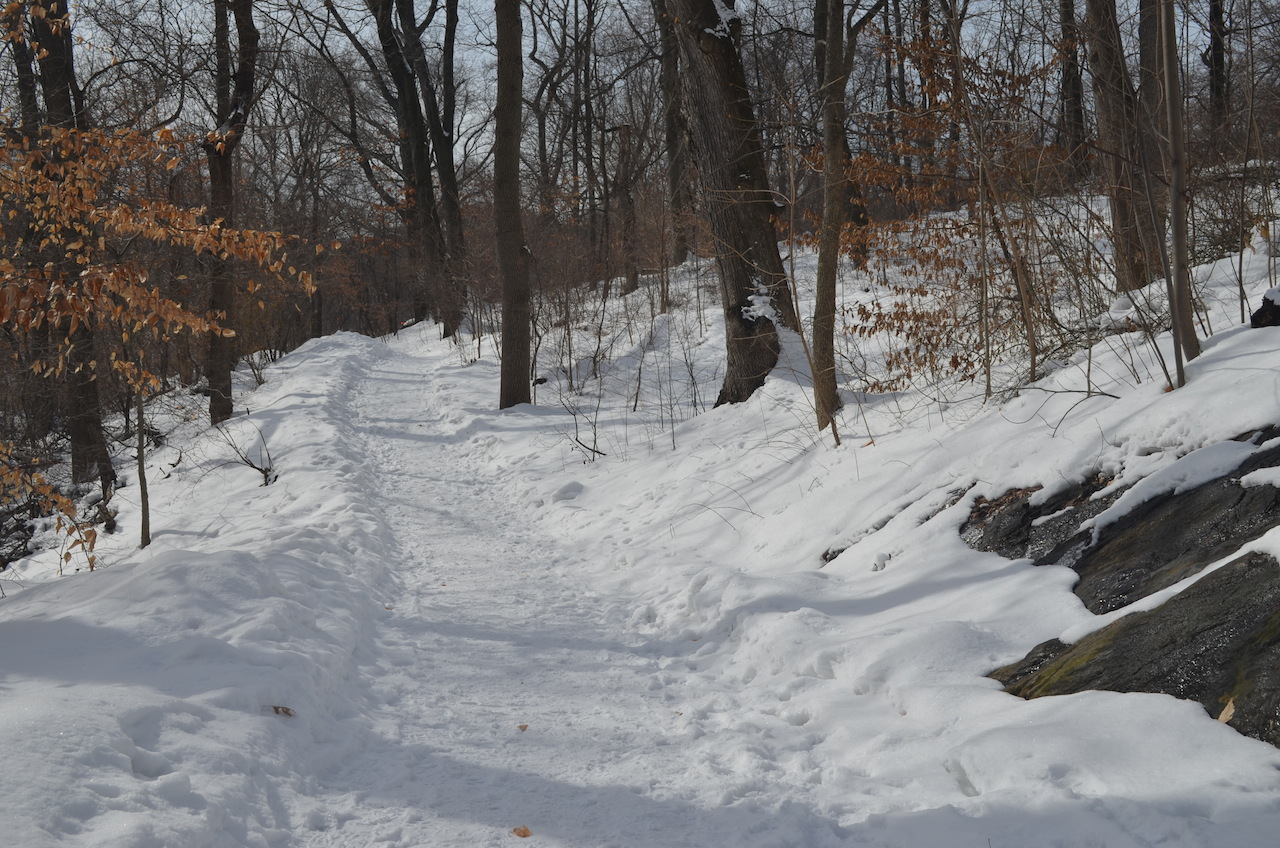 Snowy Path in Central Park Winter 2014