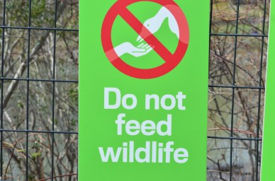Do Not Feed Wildlife