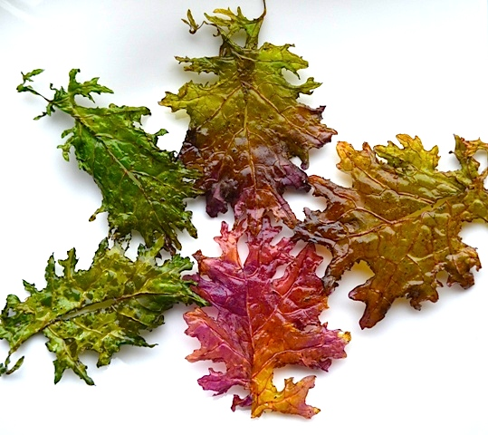 Red Russian Kale Chips