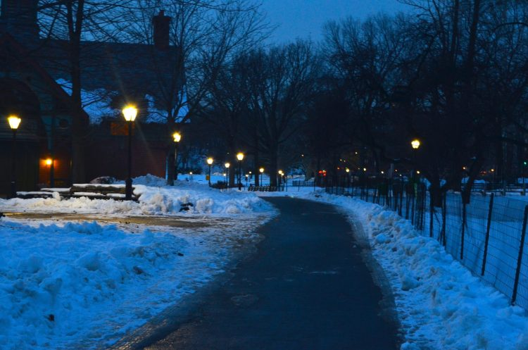 Winter Evening in Central Park
