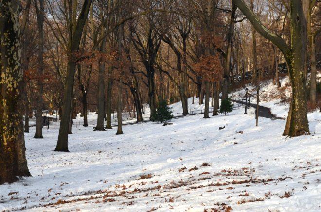 Winter in Riverside Park