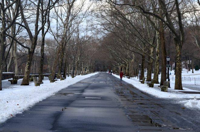 Winter Path in Riverside Park
