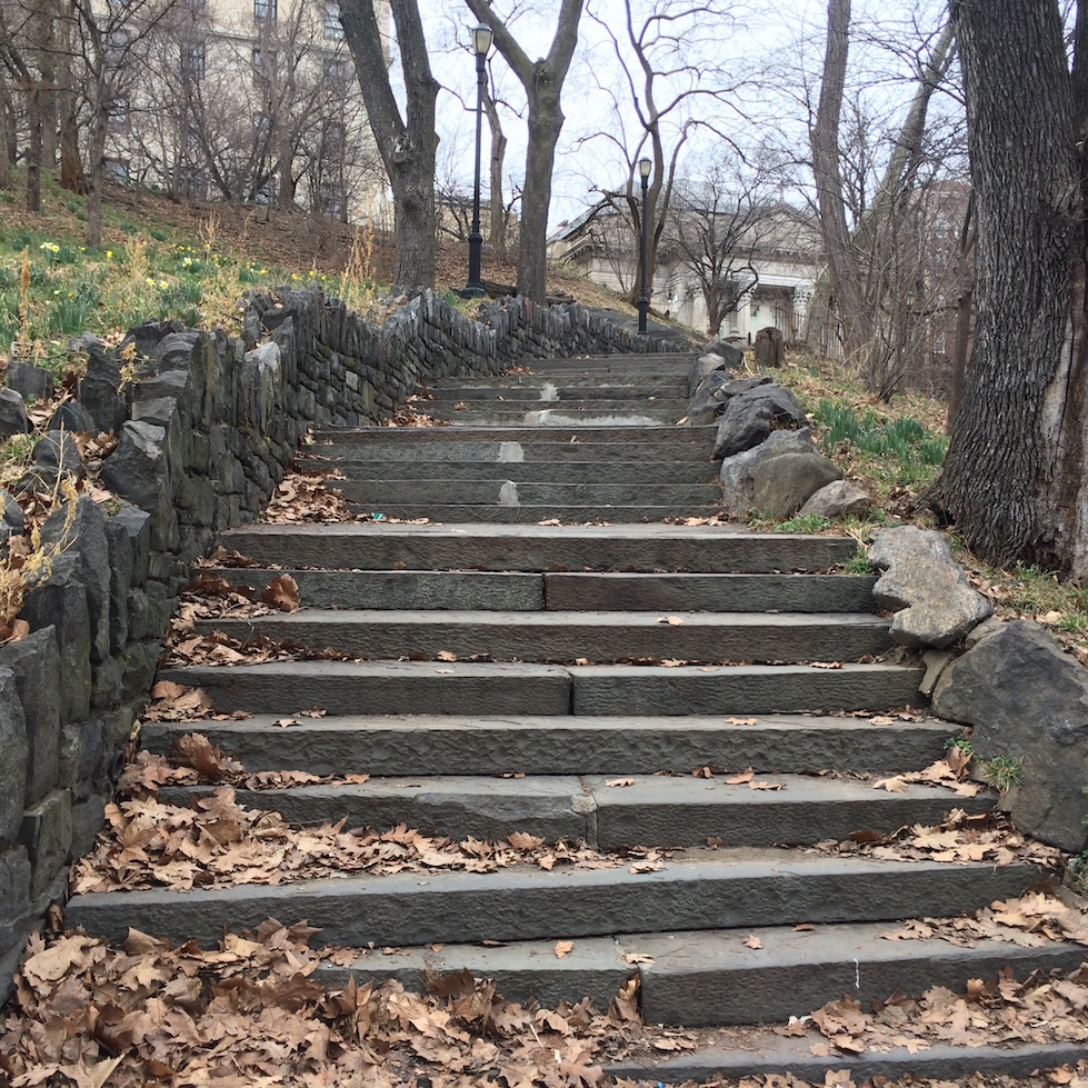 Morningside Park Stair Workout 8