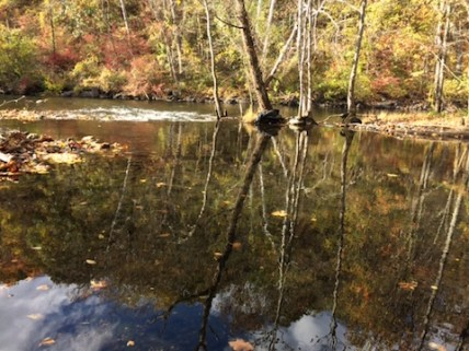 Fishing in the Croton River