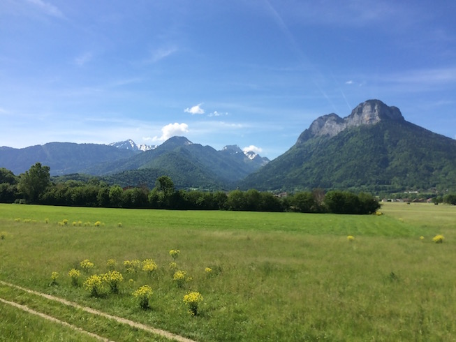 Annecy Field with Mountains in the Background