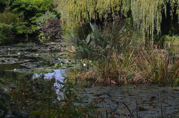 Pond at Claude Monet Garden in Giverny