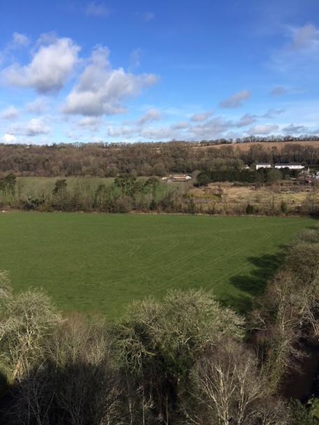 Field in Blarney