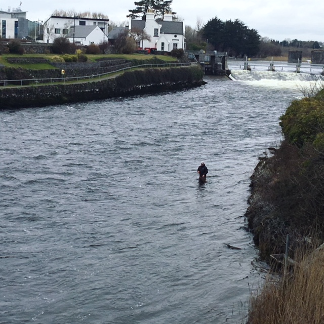 Fly Fishing in Galway
