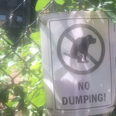 No Dumping Sign in New York City