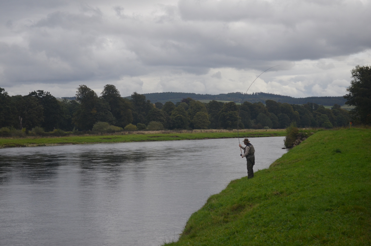 Fly Fishing River Tay Scotland