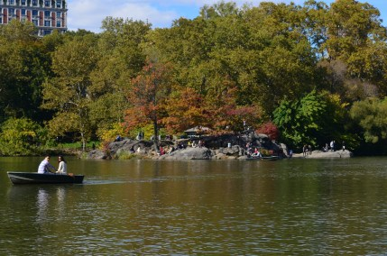Central Park Fall 2013 14
