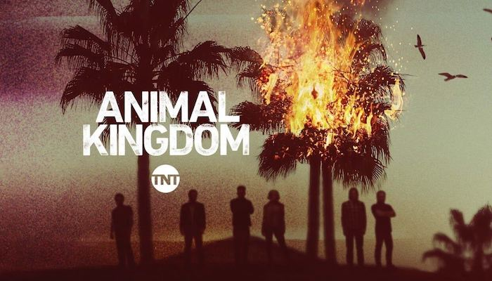 """'Animal Kingdom' S. 5, Ep. 5 """"Family Business"""" Review - A Power Struggle"""