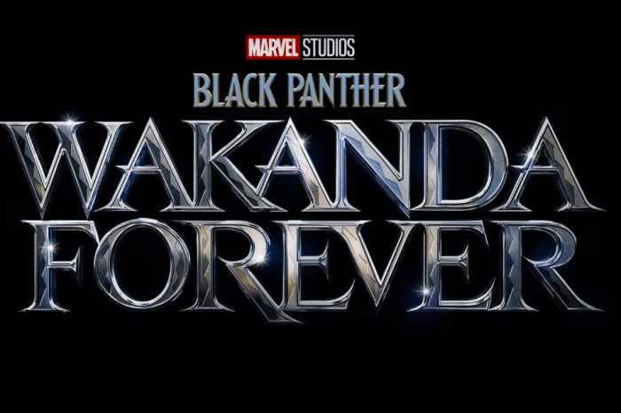 'Black Panther: Wakanda Forever' May Feature Appearance By (SPOILER)