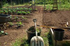 spring garden prep