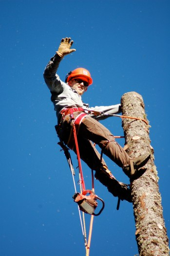 son Will- tree climber