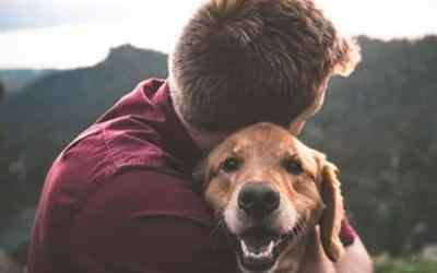 Hug Your Hound Day – Sept 9th