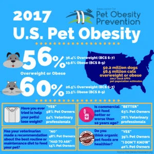 pet obesity in dogs and cats