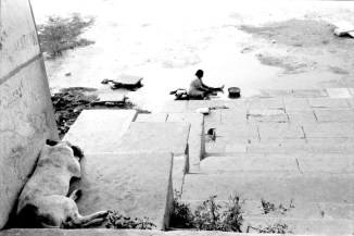 udaipur* donna