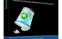 Auslogics File Recovery 9.5.0.3 Crack + Key 2021 Free Download
