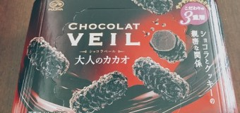"""Marty Friedman on Chocolat Veil, """"If you're in Japan, you gotta try this chocolate!"""""""