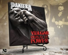 Pantera 'Vulgar Display of Power' 3D Vinyl / LP