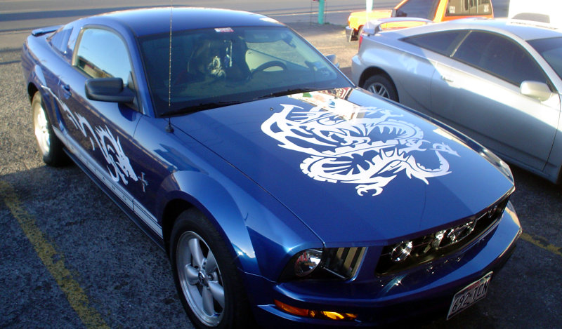 Dragon hood decal and side graphics on a blue Ford Mustang