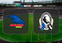 Adelaide Crows vs Collingwood Magpies