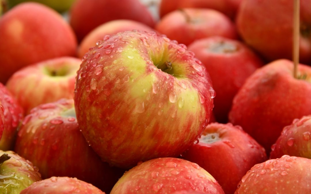 Delicious Healthy Apple Recipes for Enjoying Dessert With Ghee
