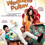 Wedding Pullav 2015 Hindi Movie Free Download