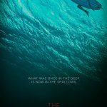 The Shallows 2016 Hindi Dubbed Movie Free Download