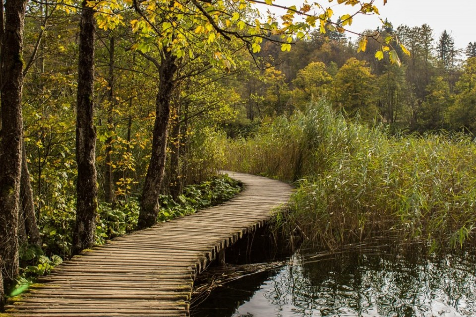 The path along Plitvice Lakes by LalalaB on Pixabay, Creative Commons image.
