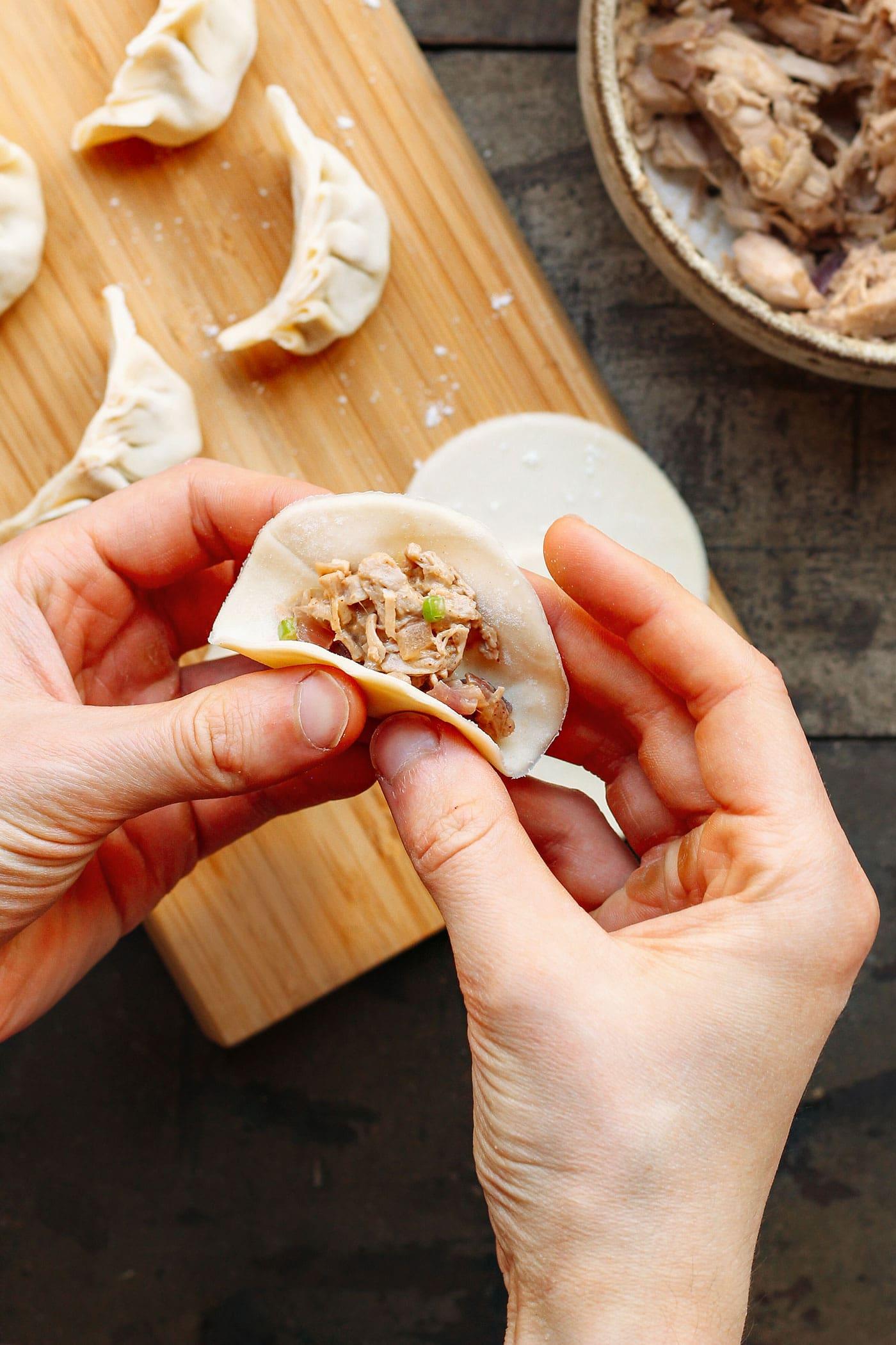 Vegan Jackfruit Potstickers