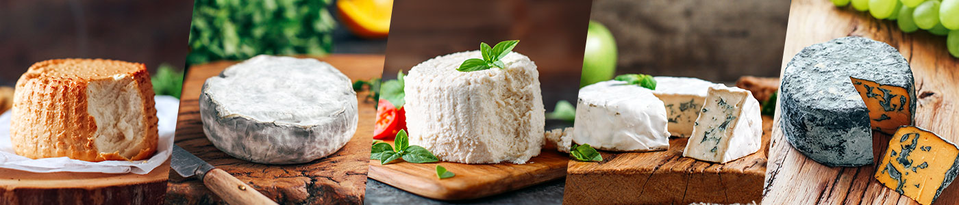 eBook Cheeses