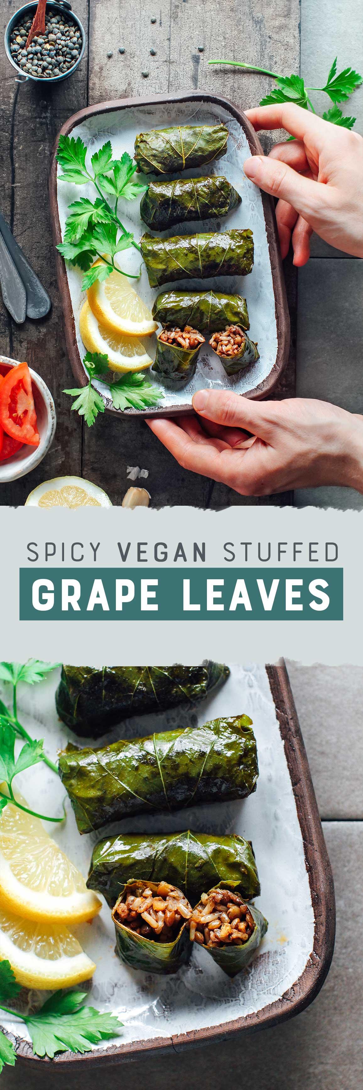 Spicy Vegan Stuffed Grape Leaves