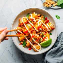Spicy Jackfruit Spring Rolls with Mayo Drizzle