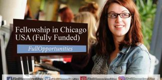 Fellowship in Chicago, USA 2020 (Fully Funded)