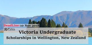 Victoria Undergraduate Scholarships in Victoria University of Wellington