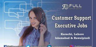 Customer Support Executive Jobs
