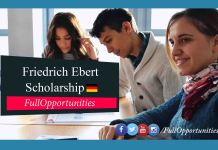 Friedrich Ebert Foundation Scholarship in Germany - Bachelor, Masters