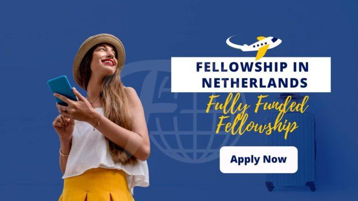 Fellowship in Netherlands 2021