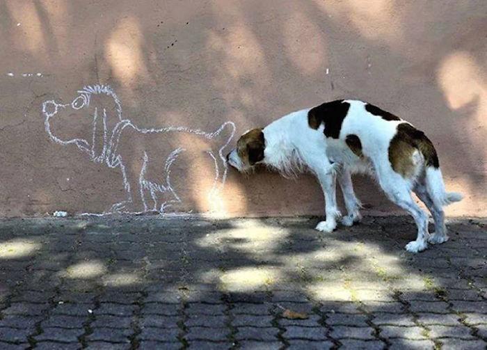 6. Собака пытается обнюхать своего нарисованного друга.