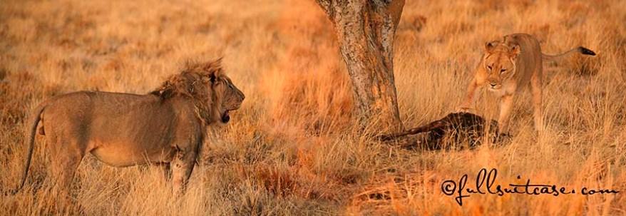Favorite Namibia photos