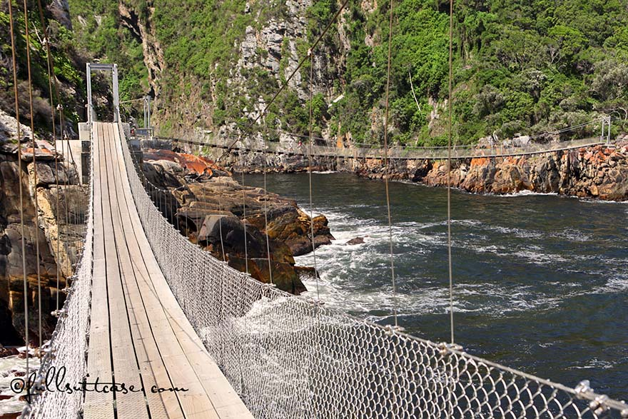Storms River suspension bridge in Tsitsikamma National Park on the garden route
