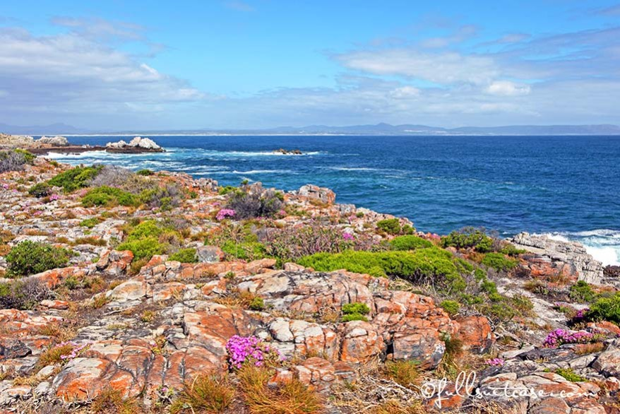 Hermanus beautiful coastline in South Africa