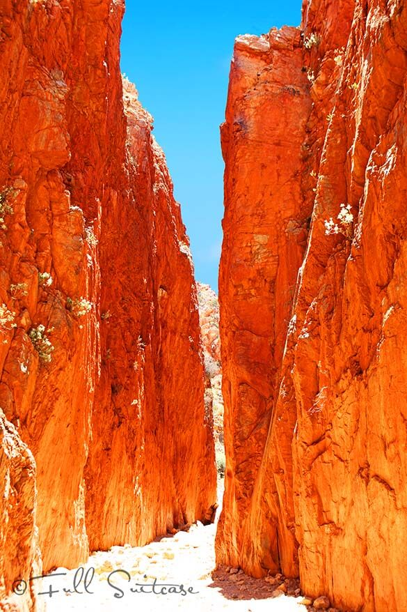 Standley Chasm at noon - West MacDonnell Ranges Central Australia