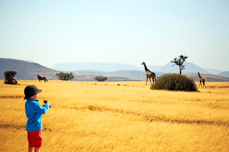 All you may need to know before going on an African safari with kids
