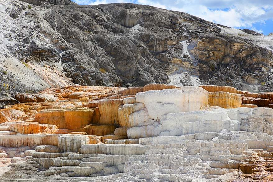 10 best things to do in yellowstone with kids in summer for Minerva terrace yellowstone