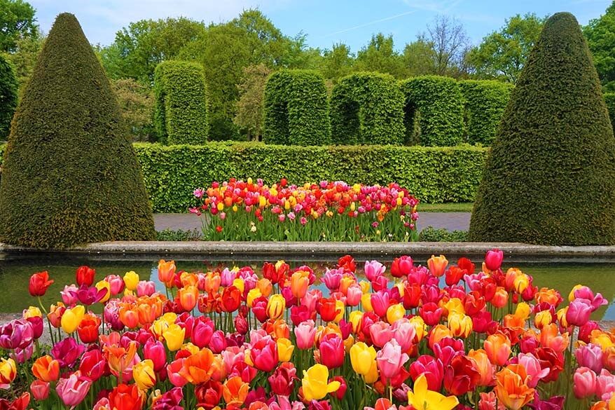 Keukenhof and the tulip fields is probbaly the most popular spring day trip you can do from Amsterdam - Keukenhof